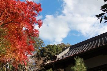 清岩禅寺の紅葉の様子-3